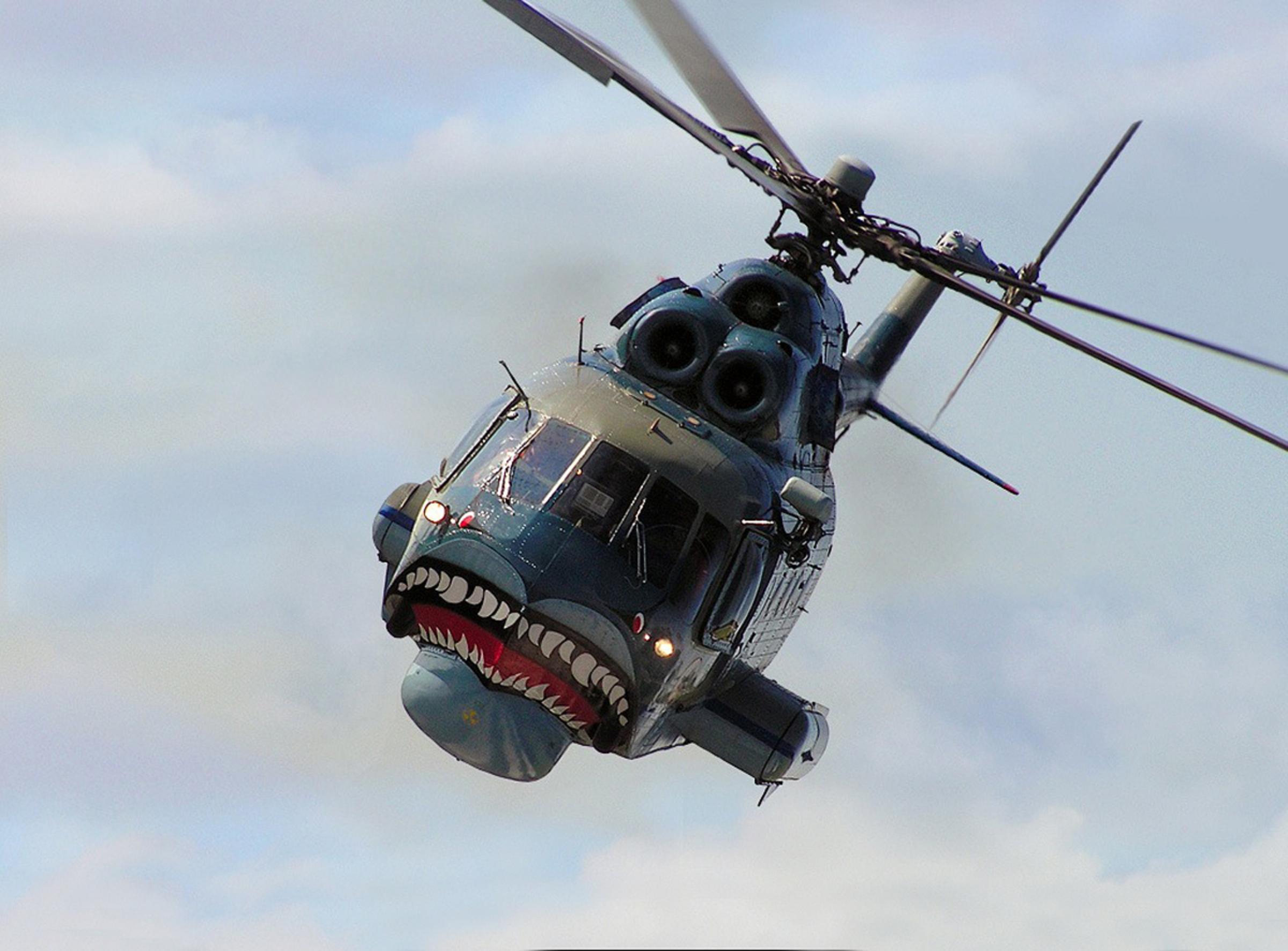 Mi-14 (13).jpg