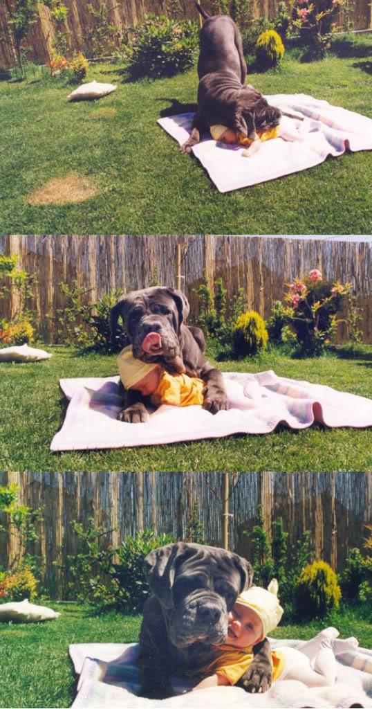 bigdogbaby.jpg