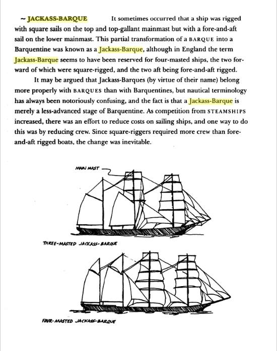 Jackass-Barque.jpg