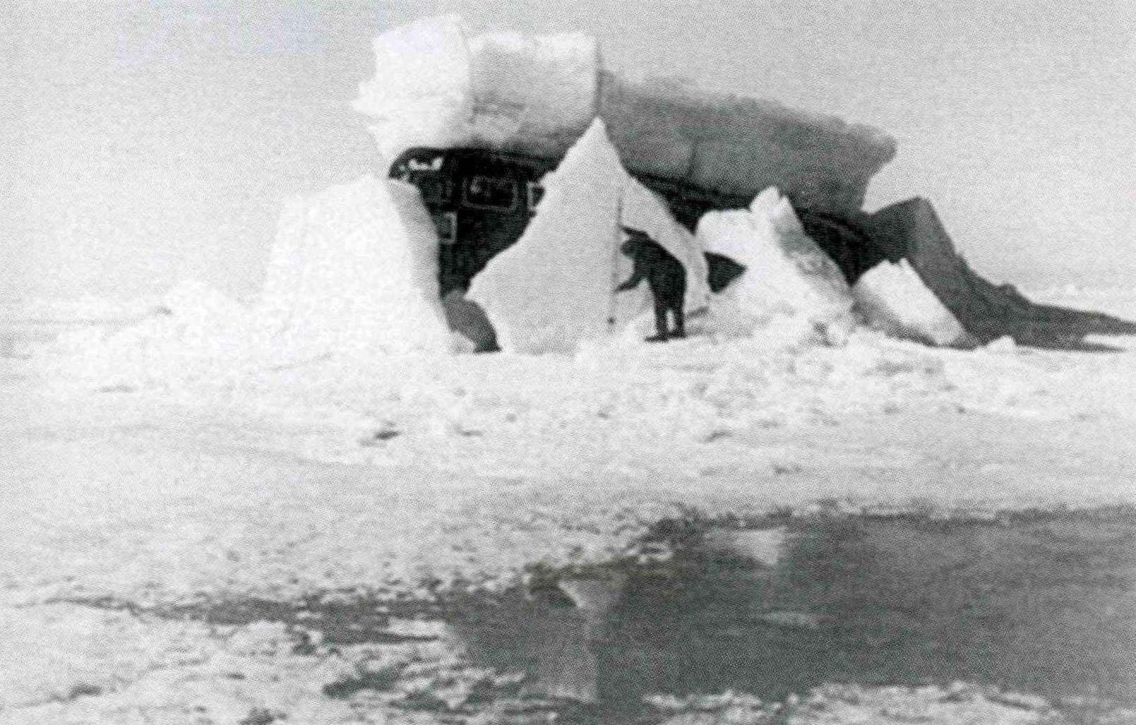 Арктика_04.07.1981.jpg