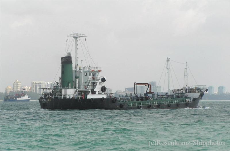 seafalcon.jpg