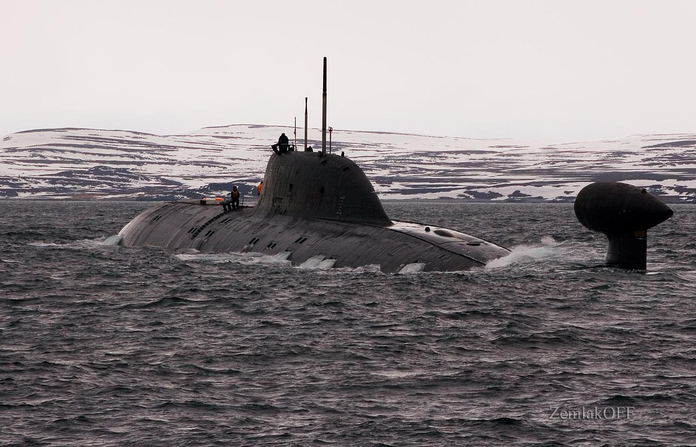фото подводного крейсера гепард рыжие