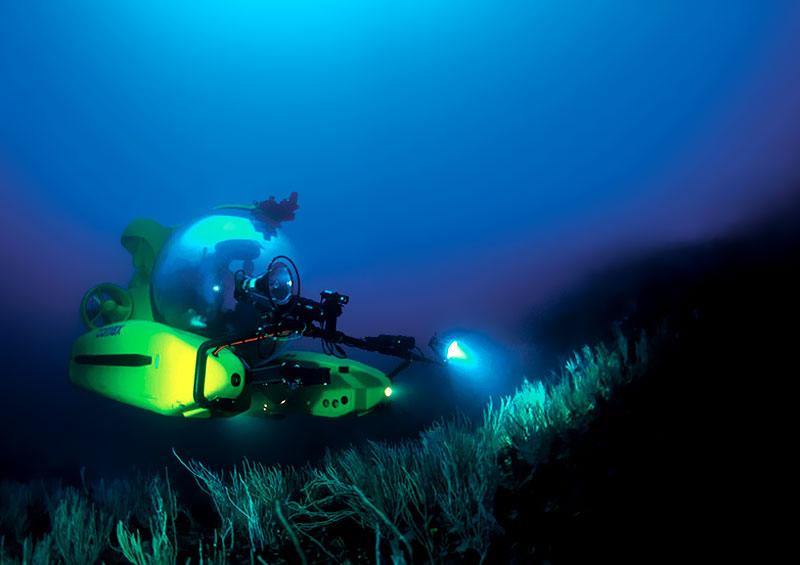 Картинка на тему подводный мир как его нарисовать листовки забрасывали