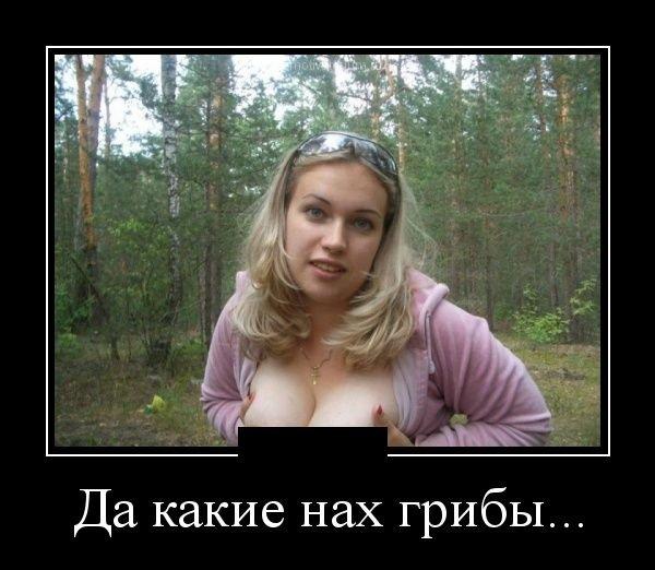 1349855765_demotivatory_07.jpg