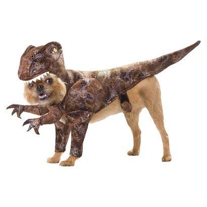 raptor_pet_costume.jpg