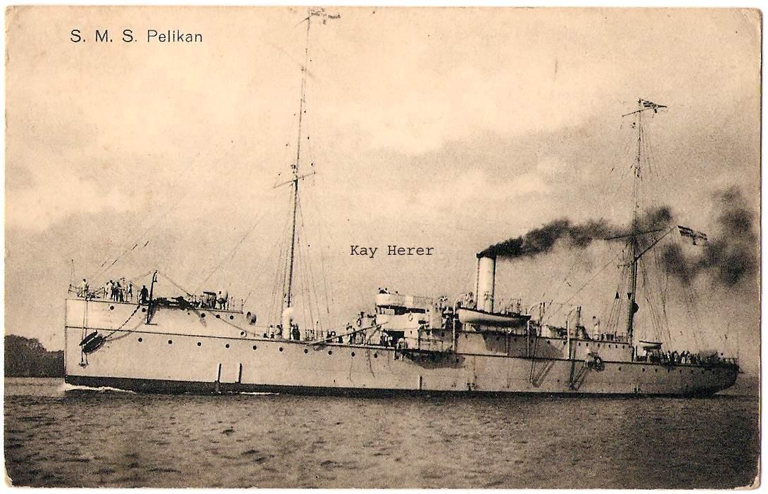 Pelikan_05.jpg
